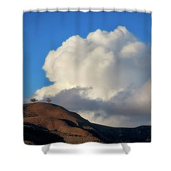 Two Trees At Ventura, California Shower Curtain