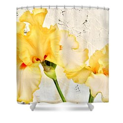 Two Yellow Irises Shower Curtain