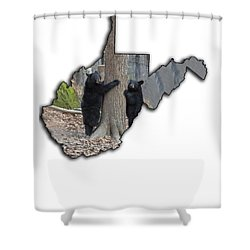 Two Young Black Bear Standing By Tree Shower Curtain