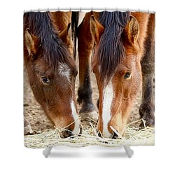 Two Young Friends Shower Curtain