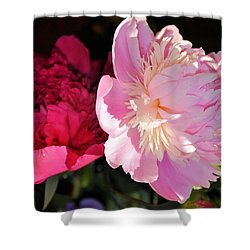 Two's Company Shower Curtain by Jan Amiss Photography