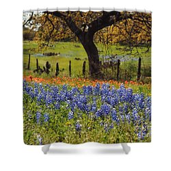 Tx Tradition, Bluebonnets Shower Curtain