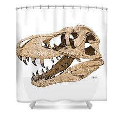 Tyrannosaurus Skull Shower Curtain