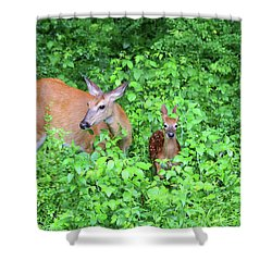 Uh Oh Spotted Shower Curtain by Karol Livote