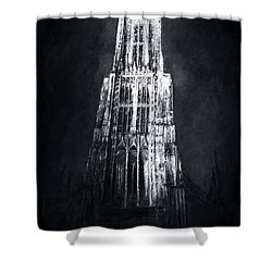 Ulmer Muenster L Shower Curtain