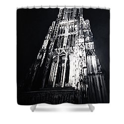 Ulmer Muenster 2 Shower Curtain