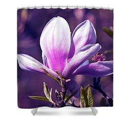 Ultra Violet Magnolia  Shower Curtain