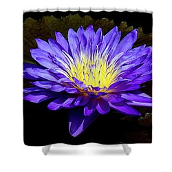 Ultra Violet Tropical Waterlily Shower Curtain by Julie Palencia