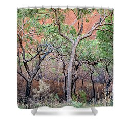 Uluru 05 Shower Curtain