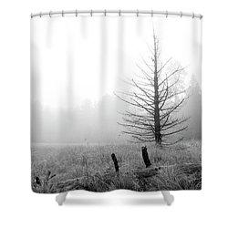 Unadorned Shower Curtain