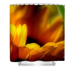She Was An Unassuming Beauty Shower Curtain