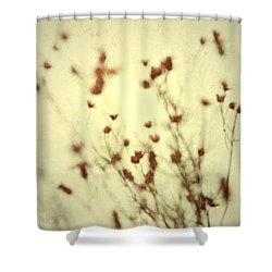 Undefined  Shower Curtain