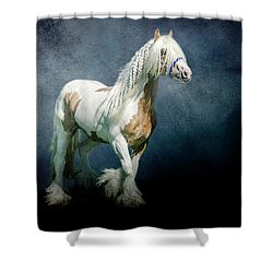 Under A Gypsy Moon Shower Curtain