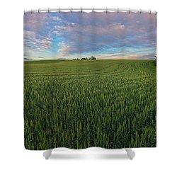 Under A Summer Sky Shower Curtain