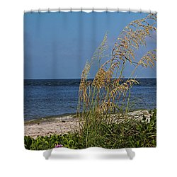 Shower Curtain featuring the photograph Under A Summer Sky by Michiale Schneider
