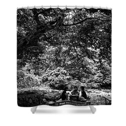 Under A Tree Shower Curtain