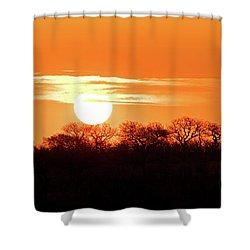 Under African Skies Shower Curtain