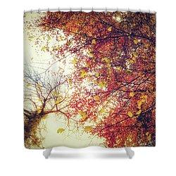 Under An Autumn Sky Shower Curtain
