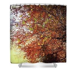 Under An Autumn Sky - No.2 Shower Curtain
