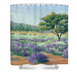 Shower Curtain featuring the painting Under Blue Skies In Lavender Fields by Sandy Fisher