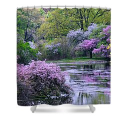 Under Spring's Spell Shower Curtain by Living Color Photography Lorraine Lynch