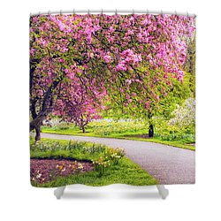 Under The Apple Tree Shower Curtain by Jessica Jenney