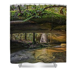 Under The Arch. Shower Curtain