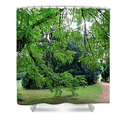 Shower Curtain featuring the photograph Under The Branches Of A Large Tree by Michal Boubin