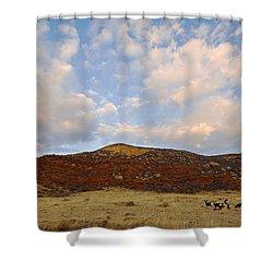 Under The Colorado Sky Shower Curtain