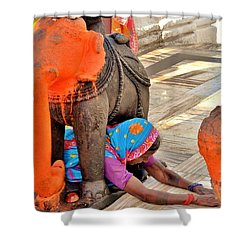 Under The Elephant - Narmada Temple At Arkantak India Shower Curtain