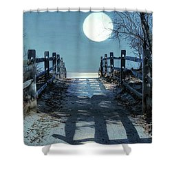 Under The Moonbeams Shower Curtain