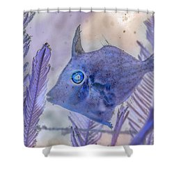 Shower Curtain featuring the photograph Under The Sea Colorful Watercolor Art #8 by Debra and Dave Vanderlaan