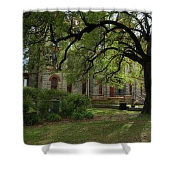 Under The Tree F5622a Shower Curtain