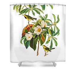 Shower Curtain featuring the photograph Undercover by Munir Alawi