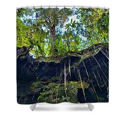 Shower Curtain featuring the photograph Underground by DJ Florek
