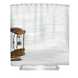 Shower Curtain featuring the photograph Underpass by AJ Schibig