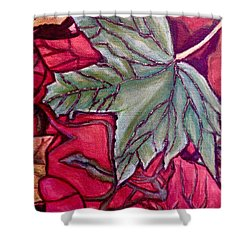 Shower Curtain featuring the painting Understudy Of A Fallen Green Maple Leaf In The Fall by Kimberlee Baxter