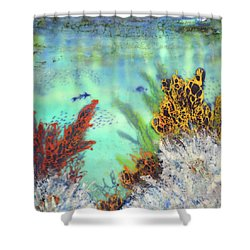 Underwater #2 Shower Curtain