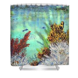 Underwater #2 Shower Curtain