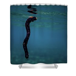 Underwater Branch Shower Curtain