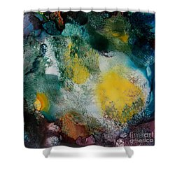 Underwater Cave Shower Curtain