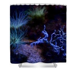 Shower Curtain featuring the digital art Underwater Landscape by Leo Symon
