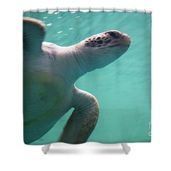 Underwater Race Shower Curtain