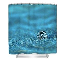 Underwater Seashell - Jersey Shore Shower Curtain