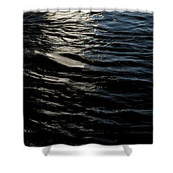 Shower Curtain featuring the photograph Undulation by Eric Christopher Jackson