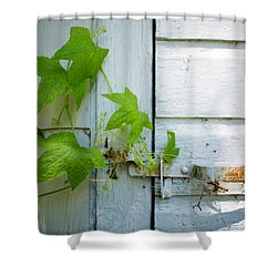 Shower Curtain featuring the photograph Unexpected Opening by Alex Blondeau
