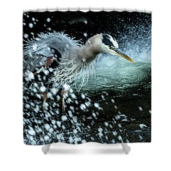 Shower Curtain featuring the photograph Unfazed Focus by Everet Regal