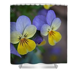 Unfurling Beauties Shower Curtain