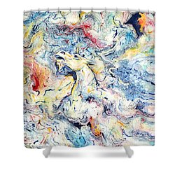 Unicorns And Rainbows  Shower Curtain