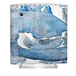 Unidentified Aquatic Object Shower Curtain
